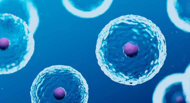 Dr. Mukesh Kumar – Everything YOU Need to Know about Stem Cells and the FDA